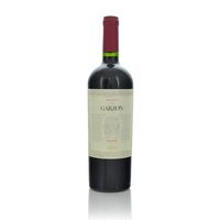 Bodegas Garzon Tannat Single Vineyard Reserva 2013
