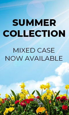Summer Collection Now Available